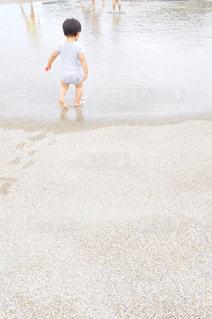 水遊びの写真・画像素材[1433246]
