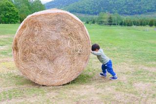 野原の干し草の上に立つ男の写真・画像素材[2278730]