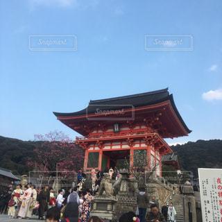 京都での散策の写真・画像素材[1359865]