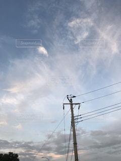 雲,電柱,秋の空,そら,秋の夕暮れ,キツネに見える雲