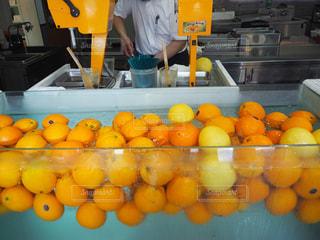 夏,水,オレンジ,涼しい,summer