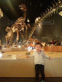 子供,人,驚き,博物館,びっくり