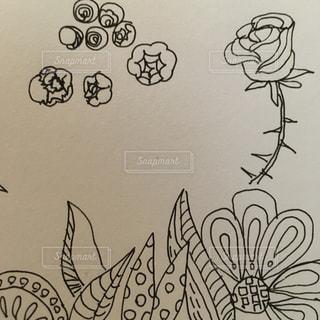 花,イラスト,バラ,アート,薔薇,モノトーン,未来,夢,ポジティブ,オリジナル,テキスト,スケッチ,想像力,ボールペン画,アートパネルアート