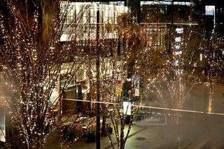 夜,屋外,樹木,イルミネーション,都会,ライトアップ,照明,グランフロント,シャンパンゴールド