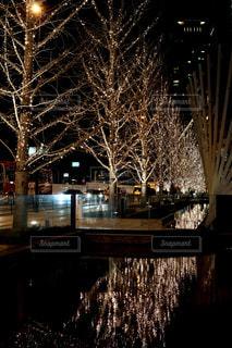冬,夜,屋外,水面,樹木,イルミネーション,都会,ライトアップ,明るい,グランフロント,景観,点灯,クリスマス ツリー