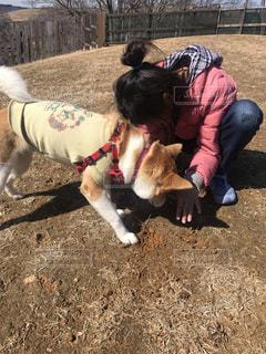 家族,犬,女の子,ペット,遊ぶ,保護犬,ミックス,ドッグラン,犬と私