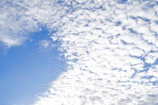 空,雲,景色,羊雲
