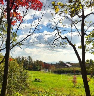 秋,観光地,那須,紅葉手前