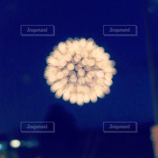 ふるさとの花火の写真・画像素材[1394172]