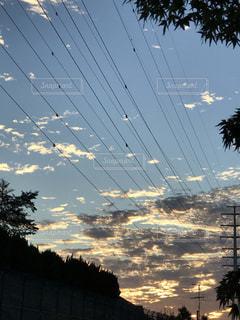 空,雲,夕暮れ,樹木