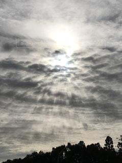 空,太陽,雲,シルエット,日の光,樹木,流れ,輝き,精華町,白い天空の世界