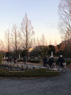 空,冬,自転車,樹木,歩道,京都府,夕映え,精華町,精華大通り,男子中学生,集団下校,けいはんなプラザプラザ