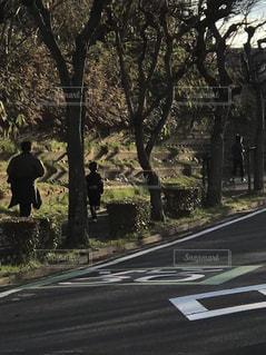屋外,道路,樹木,ランニング,京都府,精華町,親子三人