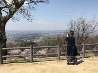 女性,風景,空,桜,屋外,後ろ姿,樹木,人物,人,立つ,スマホ撮影,奈良市,三笠山,60代