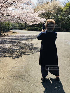 女性,風景,桜,屋外,後ろ姿,樹木,人物,人,立つ,地面,スマホ撮影,奈良市,三笠山,60代