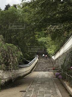 長谷寺奥の院への歴史の階段の写真・画像素材[2170414]