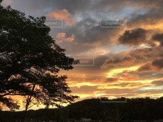 夕映えの雲の写真・画像素材[2427696]