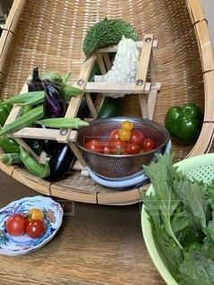 とれたて野菜の写真・画像素材[3667796]