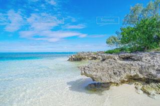 ニューカレドニアのビーチの写真・画像素材[1386059]