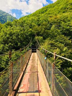 吊り橋の写真・画像素材[1403755]