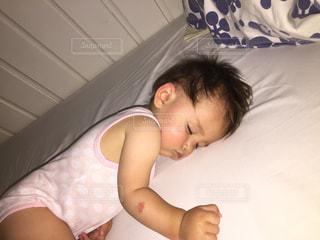 お昼寝、ぐっすり。の写真・画像素材[1378126]