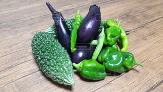 家庭菜園の新鮮野菜の写真・画像素材[3704533]