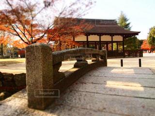 公園のベンチのビューの写真・画像素材[1398151]