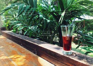 森カフェのテラスでコーヒーをの写真・画像素材[3171250]