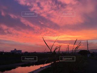 夕暮れ時の都市の景色の写真・画像素材[1394009]