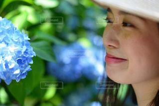 紫陽花美人の写真・画像素材[1387186]