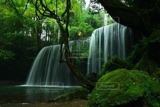 裏見の滝。の写真・画像素材[1454394]