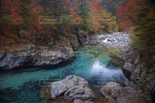 秋の色の写真・画像素材[1598878]