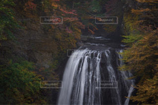 秋の滝の写真・画像素材[1598894]