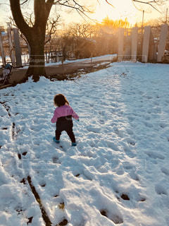 公園,夕日,雪,屋外,女の子