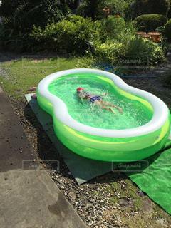 プール,水遊び,自宅でプール