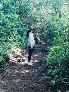 森の中の土の道を歩いて男の写真・画像素材[1404238]