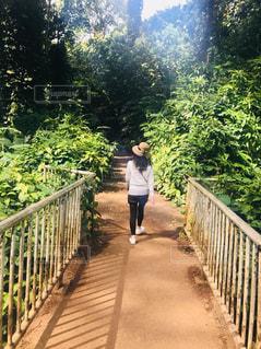橋を渡って歩いている人の写真・画像素材[1404255]