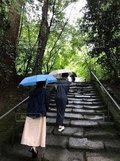 傘をさして階段をのぼる女性の写真・画像素材[3685434]