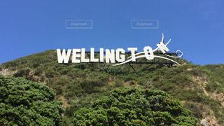 海外,青空,観光,海外旅行,ニュージーランド,ウェリントン