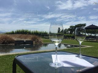 お酒,海外,観光,ワイン,美味しい,海外旅行,ニュージーランド,ワイナリー,ネルソン