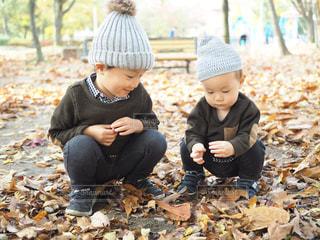子ども,秋,屋外,落ち葉,人物,人,どんぐり,赤ちゃん,ニット帽,幼児,男の子,兄弟,お揃い,2018