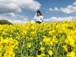 女性,空,花,春,青,黄色,菜の花