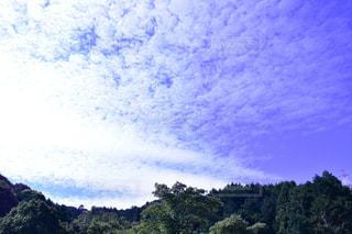 風景,空,秋,一眼レフ,秋空,愛知,岡崎