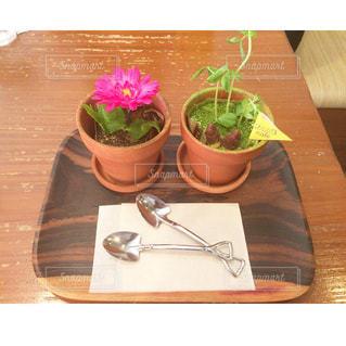 植木鉢スイーツの写真・画像素材[2267008]