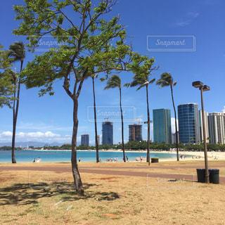 風景,海,海外,ハワイ