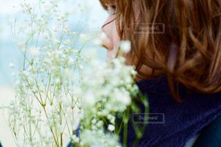 かすみ草の写真・画像素材[1686204]