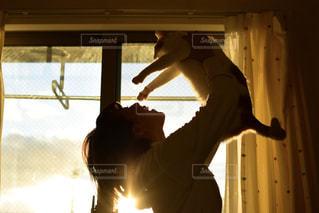 女性,猫,動物,屋内,窓,シルエット,ペット,人物,人,ネコ