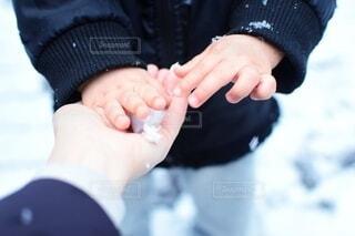 小さな手の写真・画像素材[4194462]