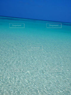 透き通った海の写真・画像素材[1407109]