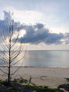 自然,風景,空,屋外,湖,太陽,ビーチ,水面,海岸,光,樹木,草木,クラウド